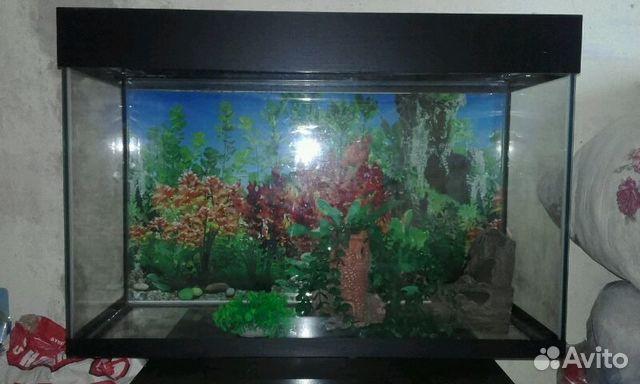 Продам аквариум 89045873745 купить 1