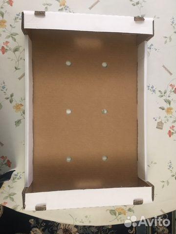 Тепличный ящик для помидоров 89882915980 купить 1