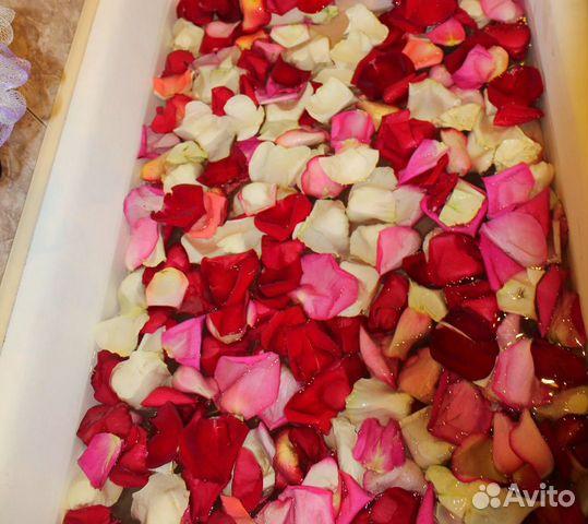 калягин фото с лепестками роз на улице акушерка, принимавшая младенца