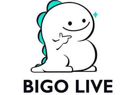 Стример/ведущий bigo live